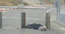 بذريعة محاولة ..رصاص الاحتلال يغتال -1076796867-thumb2.jpg