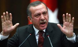 تركيا تسهل جنسيتها للاجئين السوريين 000_17-thumb2.jpg