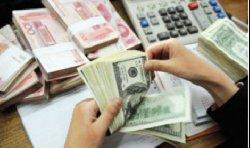 المعاملات الإسلامية تخترق بنوك النمسا 1111_5-thumb2.jpg