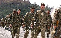الجزائر تحبط تهريب شحنة الأسلحة 111_32-thumb2.jpg