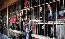 معتقلون يسيطرون حماة ويأسرون عددا 333_75-thumb2.jpg