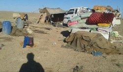 الكردي ينافس نظيره المجوسي الإجرام. 441_146-thumb2.jpg