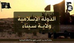 القوات الدولية سيناء 441_179-thumb2.jpg
