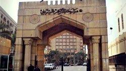 دعوة أزهرية لمحاسبة الحوثي 46283576443563-thumb2.jpg