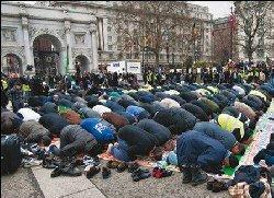 هجوم عنيف المسلمين داخل البرلمان 66_210-thumb2.jpg
