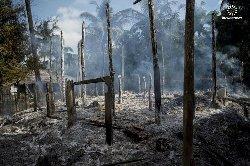 منظمة دولية تفضح جرائم بورما 8000_17-thumb2.jpg
