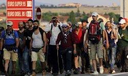 استياء واسع مسلمي المجر قبيل 800_31-thumb2.jpg