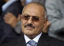 """التحالف العربي:نعلم ينام """"علي صالح"""" 88_142-thumb2.jpg"""
