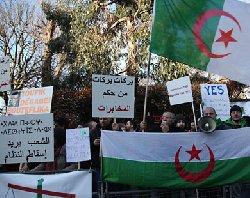 المعارضة الجزائرية تعقد ندوة لبحث brkkk-thumb2.jpg