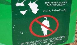 فرنسا تُعّرِّي المسلمات تُعَرِّي علمانيتها؟ burkini_2-thumb2.jpg