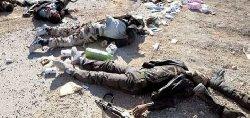 مصرع العشرات الميليشيات الشيعية والروس dz-thumb2.jpg