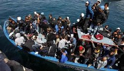 مفوضية اللاجئين تأسف hijraaa_22-thumb2.jpg