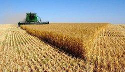شركات إيرانية تستأجر أراض زراعية iraqzz-thumb2.jpg