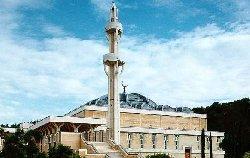 مجهولون يعلقون خنزير مسجد بالنمسا mosque-1-25-07-2014_2-thumb2.jpg