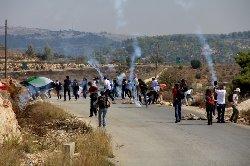 الاحتلال يعدم فلسطينيًا palllf-thumb2.jpg