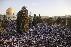مجلس الإفتاء الفلسطيني يدعو لإعمار thumbs_b_c_6e9ea2a5f868382761911fabc31f5c48-thumb2.jpg